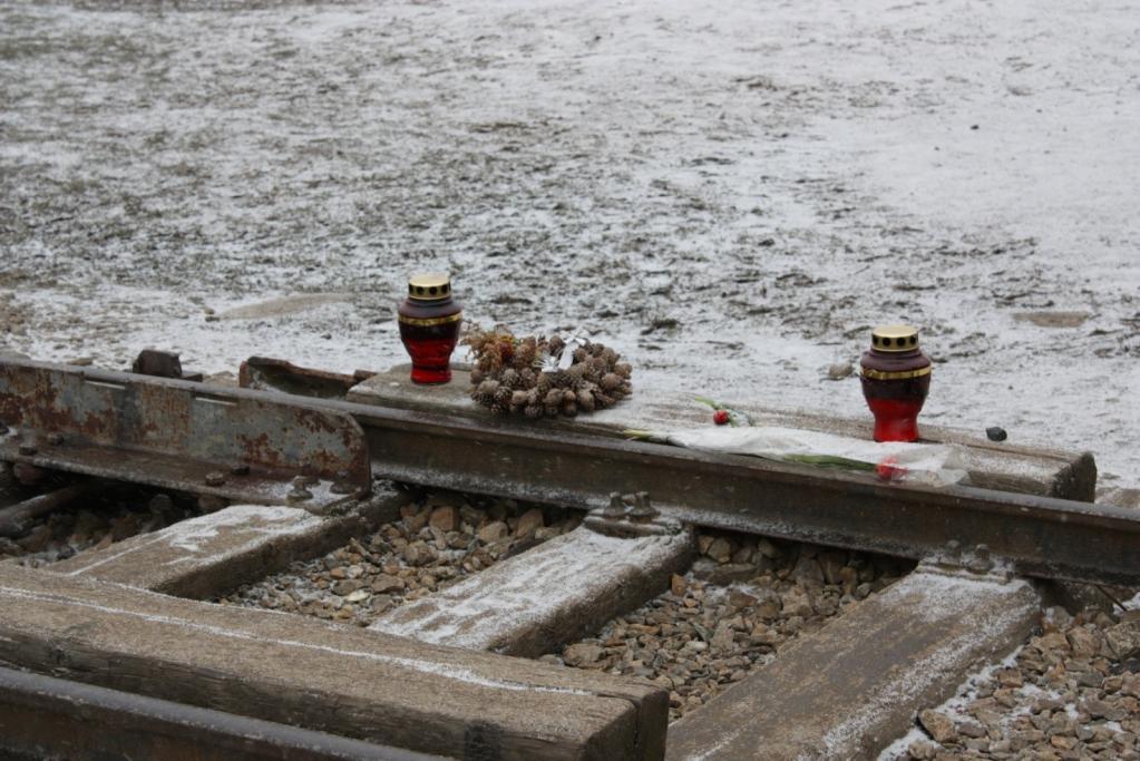 Rail à l'entrée du camp d'Auschwitz