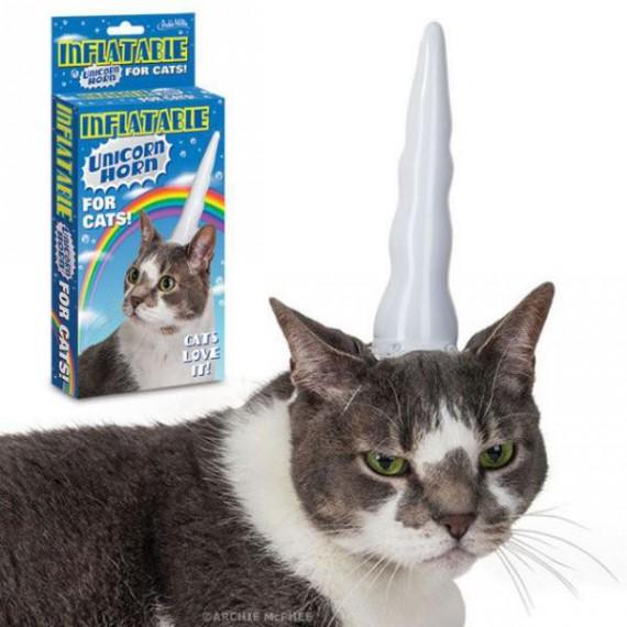 corne-de-licorne-pour-chat-lolcat-gonflable-unicorn.jpg