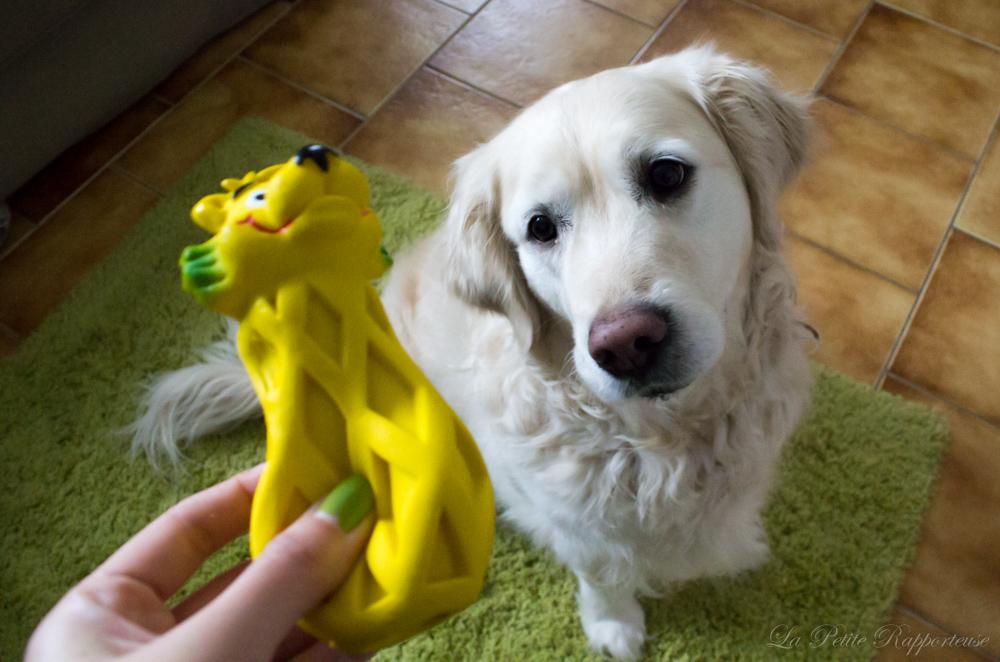 Elfie et son jouet en latex