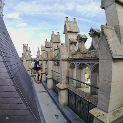 En haut tour gauche  - Cathédrale Amiens