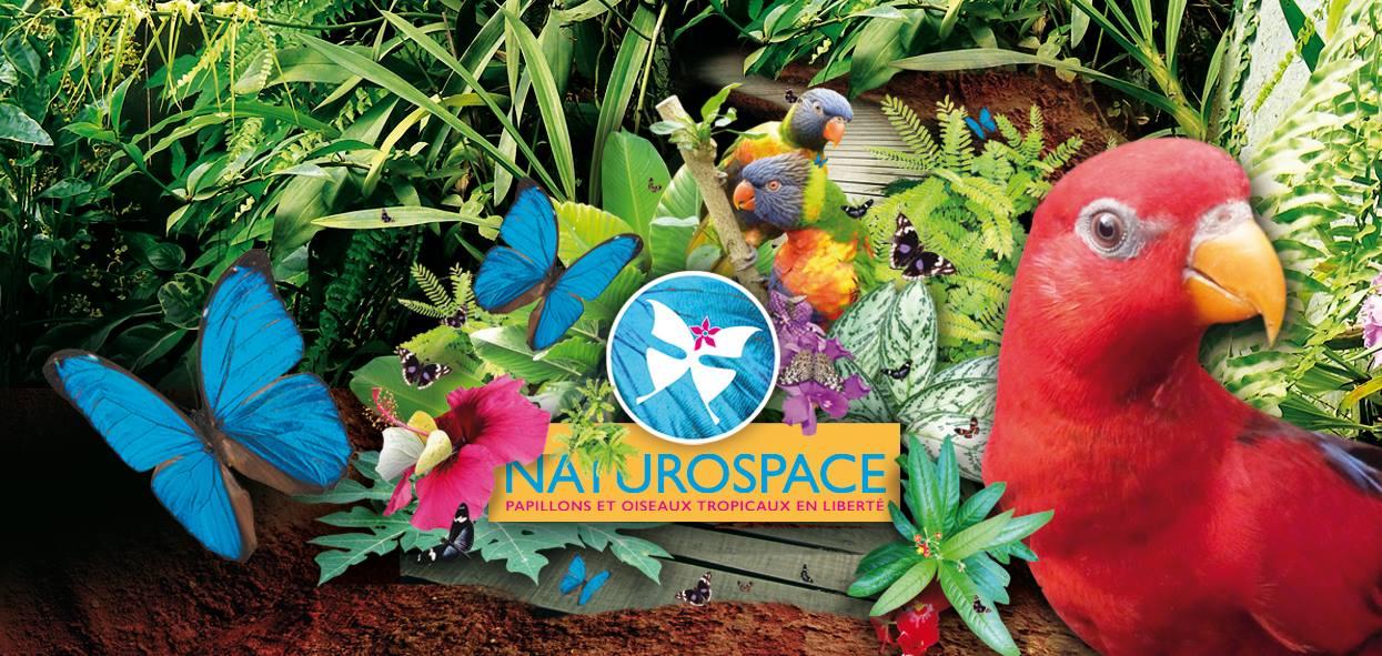 Naturospace-Honfleur (droits réservés)
